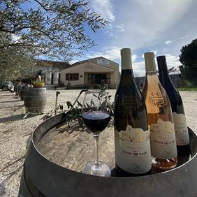 Les Vignerons de Montaren-Serviers - caveau