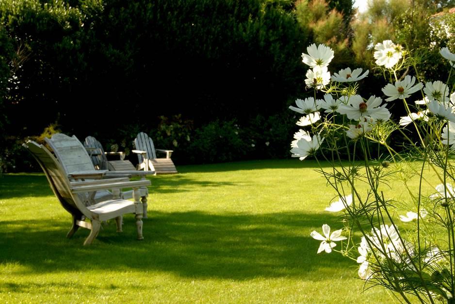 Hôtel Le Chat Botté - jardin
