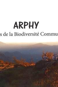 Les Hirondelles d'Arphy