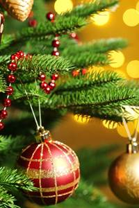 """""""La féérie de Noël"""""""