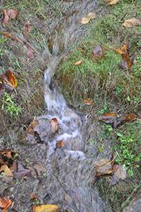 """Le Galeizon, une rivière """"sauvage"""" - illustration sur le site du Martinet"""