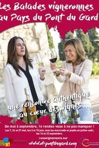 Balades Vigneronnes au Domaine Gilphine