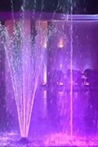 Show aquatique