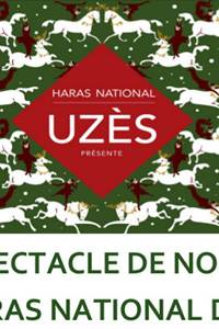 Spectacle de Noël au Haras National