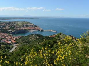 THE COLLIOURE TOPS