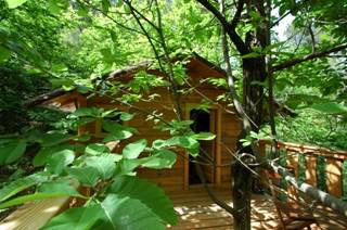 La Cabane de Peyrolles, cabane dans les arbres