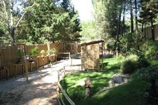 Jardin Arboretum de Bonsaï - Bergerie des Animaux Miniatures