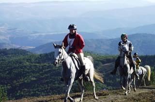 Équitation avec Élevage Séranne Larzac