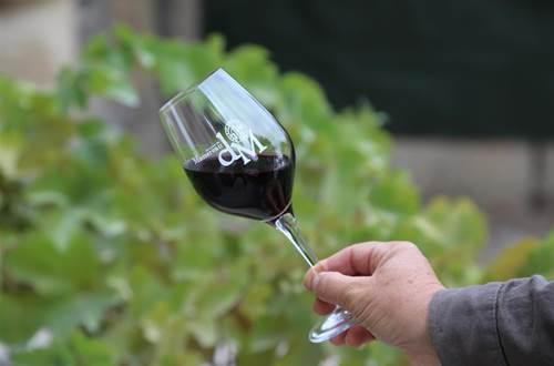 Visite du Vignoble et dégustation de vin ©