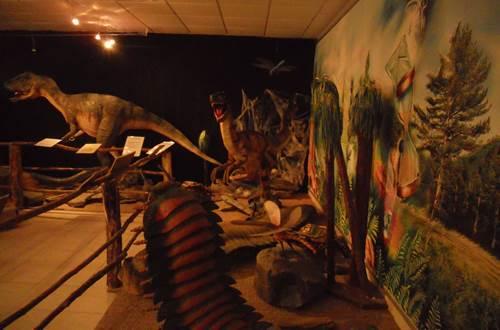 forêt fossile de champclauson ©