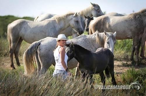 Camargue chevaux ©