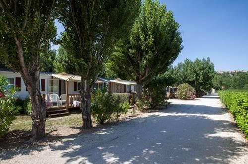 Camping Les Amarines - Allée ©
