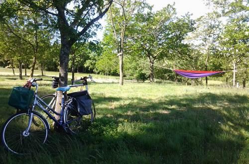 Aire naturelle de camping ©