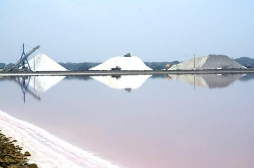 Salin d'Aigues Mortes - Récolte du sel ©