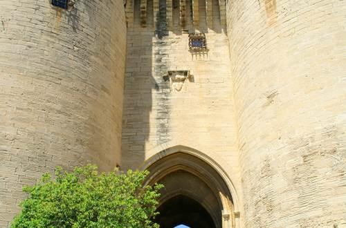 Fort Saint André - Tours Jumelles ©